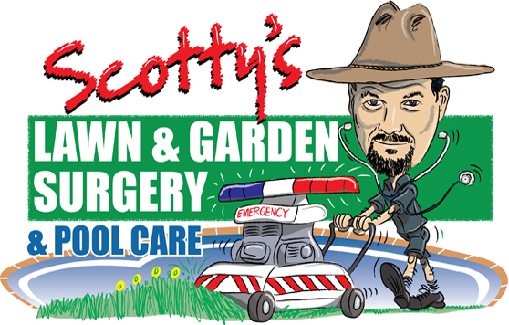 Scotty 39 s lawn and garden surgery pool care for Garden pool care